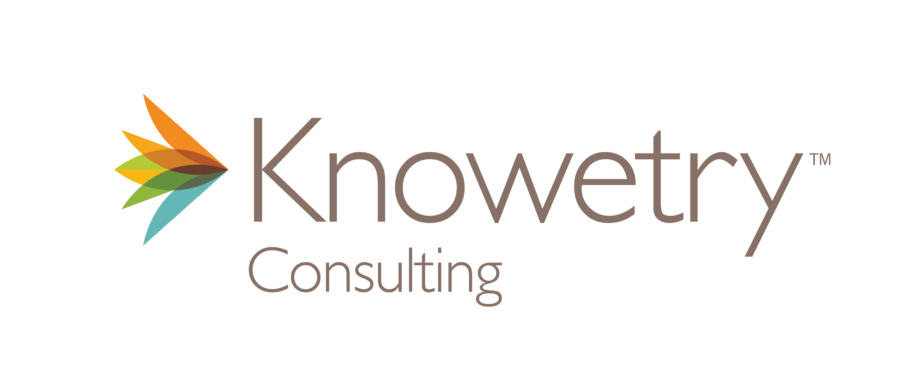 Knowetry Consulting